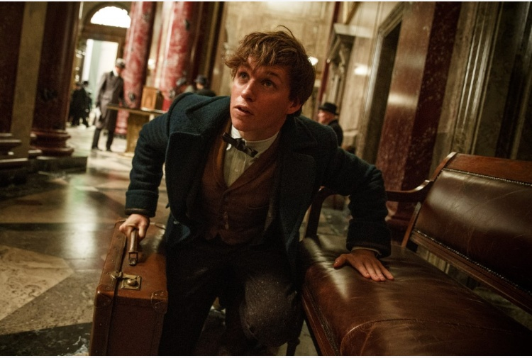 Spinoff Harry Potter, il trailer in anteprima